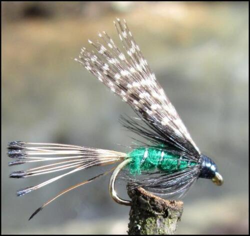 Teal /& Green Nassfliegen GILCHRIST FLIEGEN 6 Stück von einer Größe
