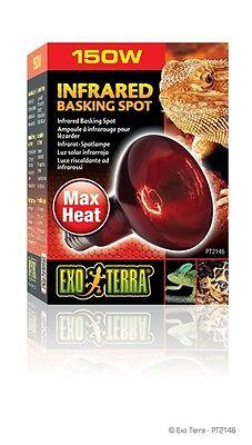 Exo Terra Infrared Basking Spot 150 Watt 15561221467 Ebay