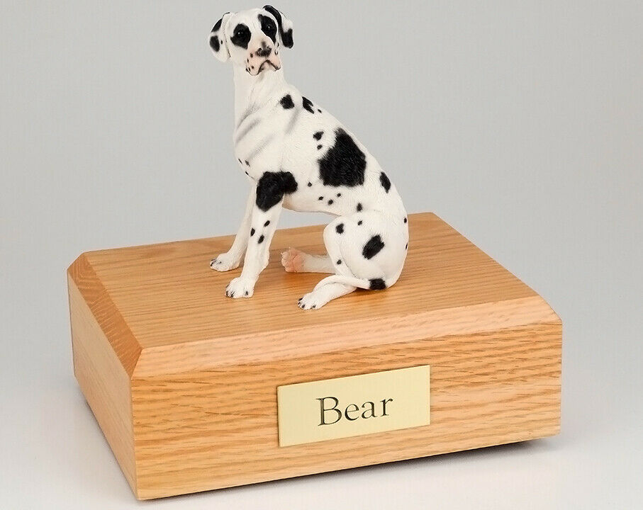 Great Dane Harlequin Ears Down Pet Cremation Urn Avail in 3 Diff Colores 4 Dimensiones