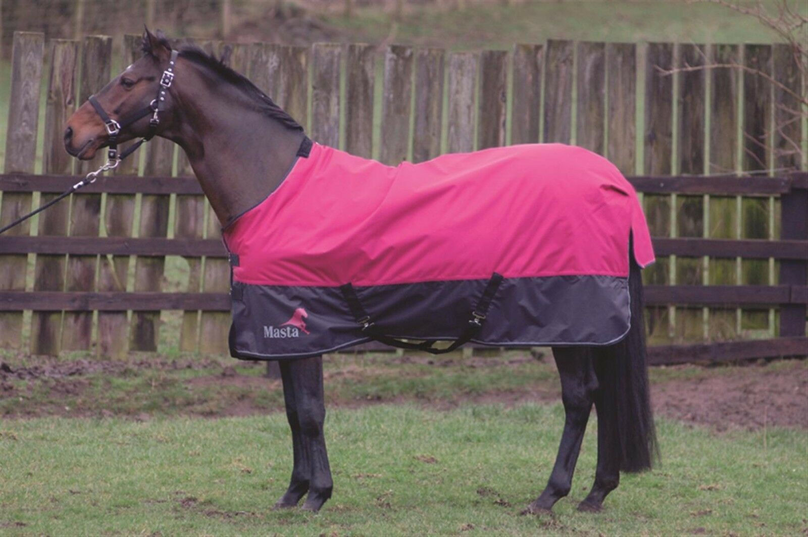 Masta Avante 340g 600 Denier Winter Heavyweight Heavyweight Heavyweight Horse Turnout Rug Blanket bac927