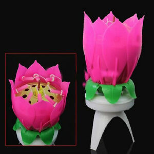 Amazing Happy Birthday Musical Magical Opening Lotus Flower Candle