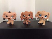 3 Littlest Pet Shop Cocker Spaniels Puppy Dogs  #575 #716 #748  Very Cute