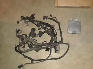 1994-1995 ford mustang 5.0l engine wiring harness gt40 cobra 302 with  computer | ebay  ebay