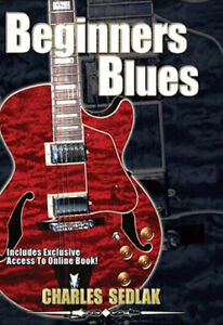 Learn To Play Beginner Blues Guitar  Lessons Video DVD Licks Scales Exercises