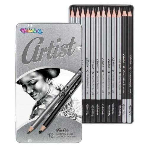 ARTIST 12-set Holzkohle Bleistift Beruf Skizzieren Künstler Malerei Kohle