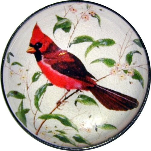Crystal Dome Button Red Cardinal on Branch 1 /& 3//8 inch FREE US SHIPING 138