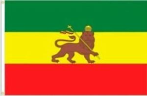 """Ethiopia Lion Judah Country Lightweight Flag Printed Knitted Style Scarf 8/""""x60/"""""""
