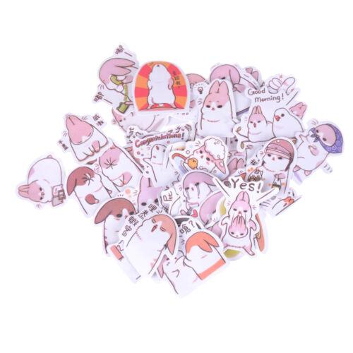 40X Kawaii Chubby Rabbit Pet Sticker Notebook Diary Decor Toy School Supplies GN