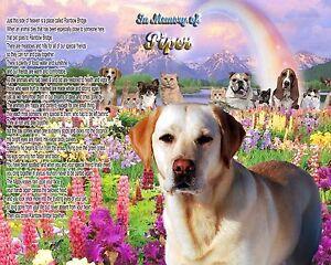 Rainbow-Bridge-Poem-Yellow-Labrador-Memorial-Picture-Personalized-w-Dog-039-s-Name