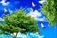 3D Seabirds Tree Ceiling WallPaper Murals Wall Print Decal Deco AJ WALLPAPER AU