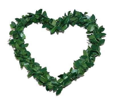 Blumen, Blüten & Girlanden KöStlich Herzen Herz Buchsbaumherz Grün ⌀10cm Autoschmuck Hochzeit Buchsbaum 1 2 3 4 5 10 Bastel- & Künstlerbedarf