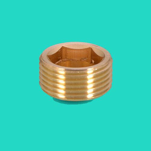 "1//8/"" 1//4/"" 3//8/"" 1//2/"" 3//4/"" 1/"" Brass Hex Plug Cap Socket Pipe Tube Thread Fitting"