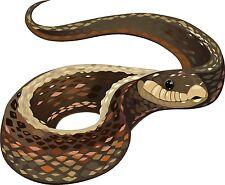 Serpiente Viper Python Sticker Etiqueta de vinilo gráfico Etiqueta V1