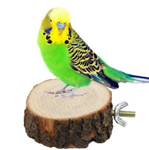 5-7cm-Wooden-Parrot-Bird-Cage-Stand-Platform-Perches-Coin-Pet-Toy-Budgie-Hamster
