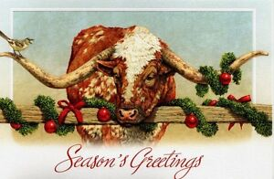 Texas Christmas Cards.Details About 16 Boxed Christmas Cards University Of Texas Longhorns Long Horn Cow Cattle