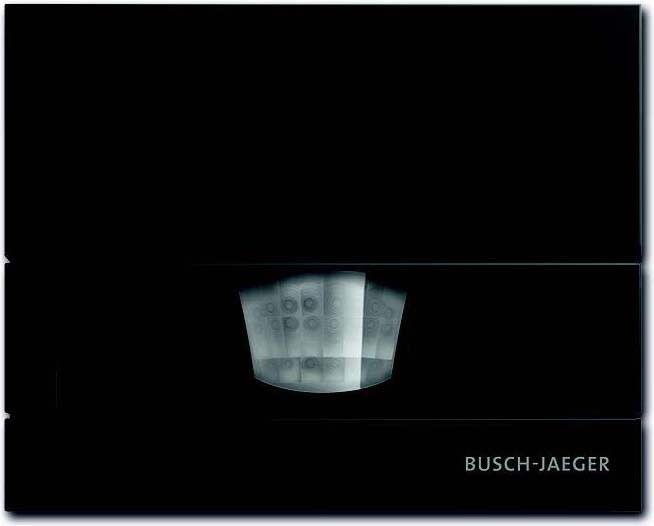 Busch-Jaeger Wächter anthr 6854 AGM-35 (1er)