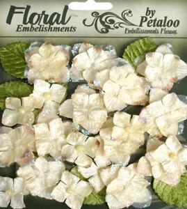 Velvet-Hydrangeas-32-flower-amp-leaf-mix-CREAM-VELVET-2-to-4cm-Petaloo-HYD