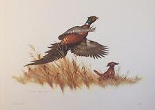 1969 Watercolor Print Artist Clark Bronson Chevy Promo Ring Necked Pheasant