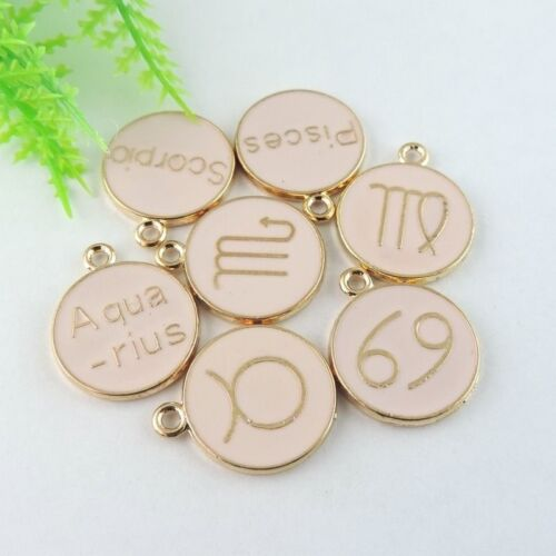 20pcs Mixed Style Gold Alloy 12 Constellations Pendant Charms 21*18*2mm 39008