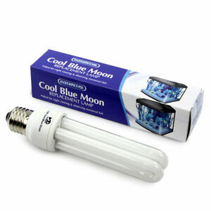 Interpet-15W-Cool-Blue-Moon-lamp-BRAND-NEW-BOXED-PRODUCT