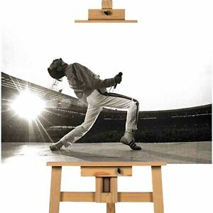 Freddie Mercury Queen Canvas Print Wall Art