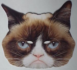 The Grumpy Cat Celebrity Face Mask - Great for Parties - 1st Class ... dfcb4b63d628