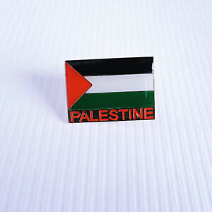 Palestinian and Flag Pin