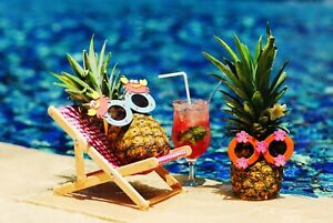 A1-Pineapple-Holiday-Poster-Art-Print-60-x-90cm-180gsm-Funny-Beach-Gift-12316