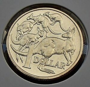 one dollar 2017 Australia $1 Mob Of Roos Coin From Mint Roll UNC