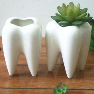 HO-Funny-Tooth-Shape-Ceramic-Flower-Pot-DIY-Succulent-Plant-Holder-Decor-Conven