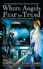 Where Angels Fear to Tread: A Remy Chandler Novel by Thomas E. Sniegoski (Paperback, 2011)