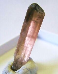 Rubellit-X-Jonas-Mine-Minas-Gerais-Brasilien-Turmalin-rubellite-716