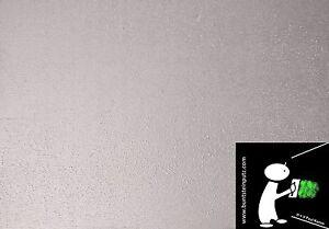 Effekt Wandfarbe Wandlasur Silber Perlweiss Metallic Ebay