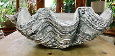 Giant Clam Shell Handmade Finished Sculpture Ornament Pearl Home Decor Gift