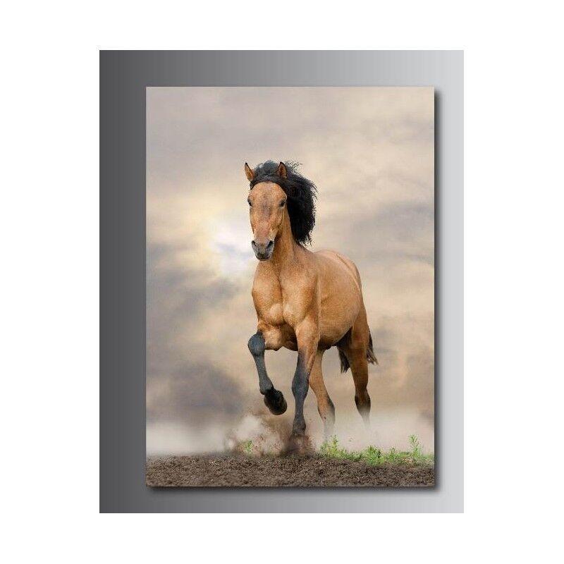 Tableaux toile déco rectangle 110327534 verticale cheval 110327534 rectangle c4494b
