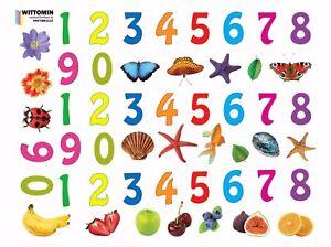 Aufkleber-Sticker-Fenster-Wandsticker-Wandaufkleber-Zahlen-Kinder-Obst-Muscheln