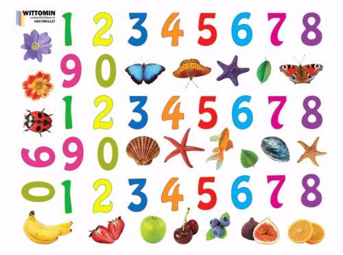 Aufkleber Sticker Fenster Wandtattoo Wandaufkleber Zahlen Kinder Obst Shell Deko