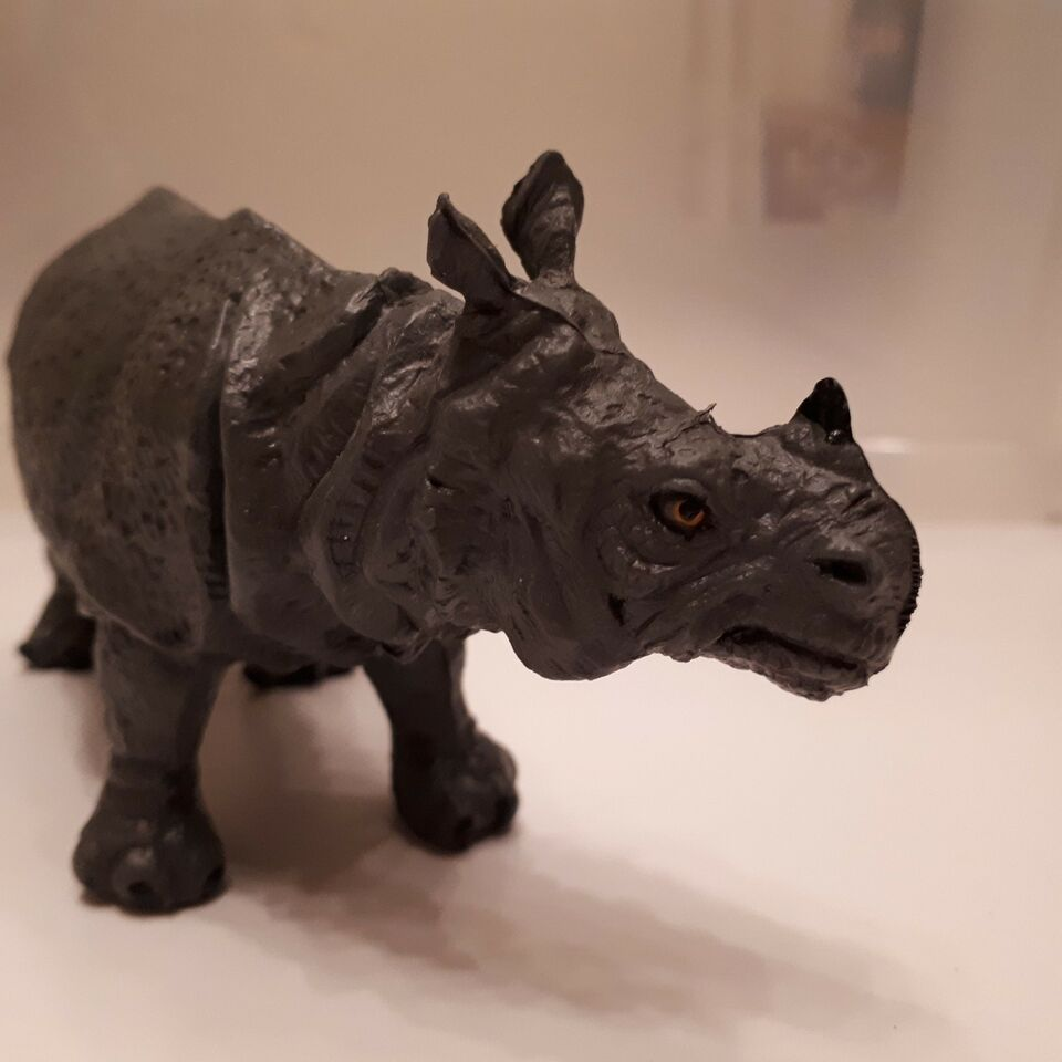 Dyr, Et næsehorn, Rhinoceros