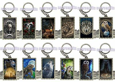 NEW ANNE STOKES LISA PARKER 3d FANTASY ART KEYRINGS WOLVES CATS OWLS ETC