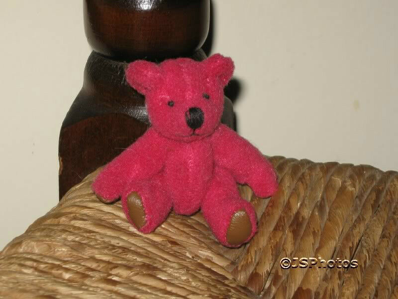 UK Miniature 2 inch inch inch Rosa Jointed Girl Teddy Bear Jointed  Leather Paw Pads 9977cc