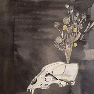 STEVE-GUNN-AND-BLACK-TWIG-PICKERS-Seasonal-Hire-2015-CD-album-NEW-SEALED