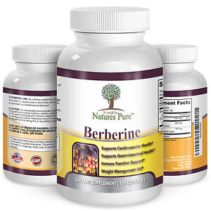 Berberine-HCl-500mg-Premium-120-capsules-2-Month-Supply