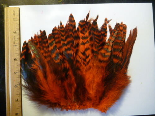 Rooster Saddle Grizzly Variant SCHLAPPEN 6 Colors Available Fly Tying Extentions