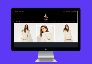 Website-Shopify-Work-from-Home-Dropship-store-For-sale-Make-money-online