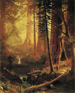 Giant-Redwoods-of-California-by-Albert-Bierstadt-Giclee-Canvas-Print-Repro