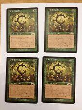 MTG 4X OATH OF DRUIDS - GIURAMENTO DEI DRUIDI JAPANESE  NEAR MINT