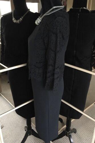 Dress Taglia Superb Lace Black Overlay Mint Velvet 10 Nuovo Ladies FcWqpwnUnR