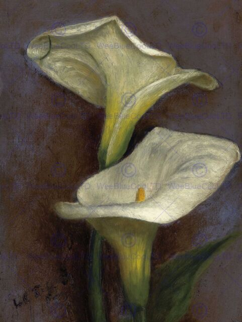 Painting Still Life Flower Tiffany Calla Lilies Poster Art Print ...
