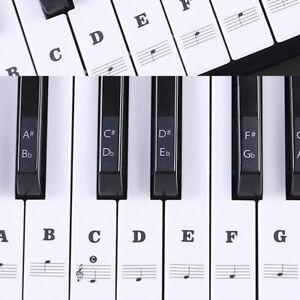 Music-Keyboard-Piano-Sticker-88-61-54-49-Key-Learn-To-Play-Early-Year-Beginner