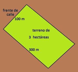 Terreno Urbanizable de 3 hectareas en La Mitra de Chorrera